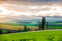 Hills and trees of Biei of sunset Stock photo [3320687] Natural