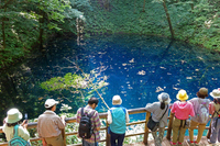 Aomori Prefecture Shirakami Juniko Aoike Stock photo [3327365] 12