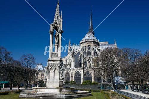 ノートルダム大聖堂 (パリ)の画像 p1_7