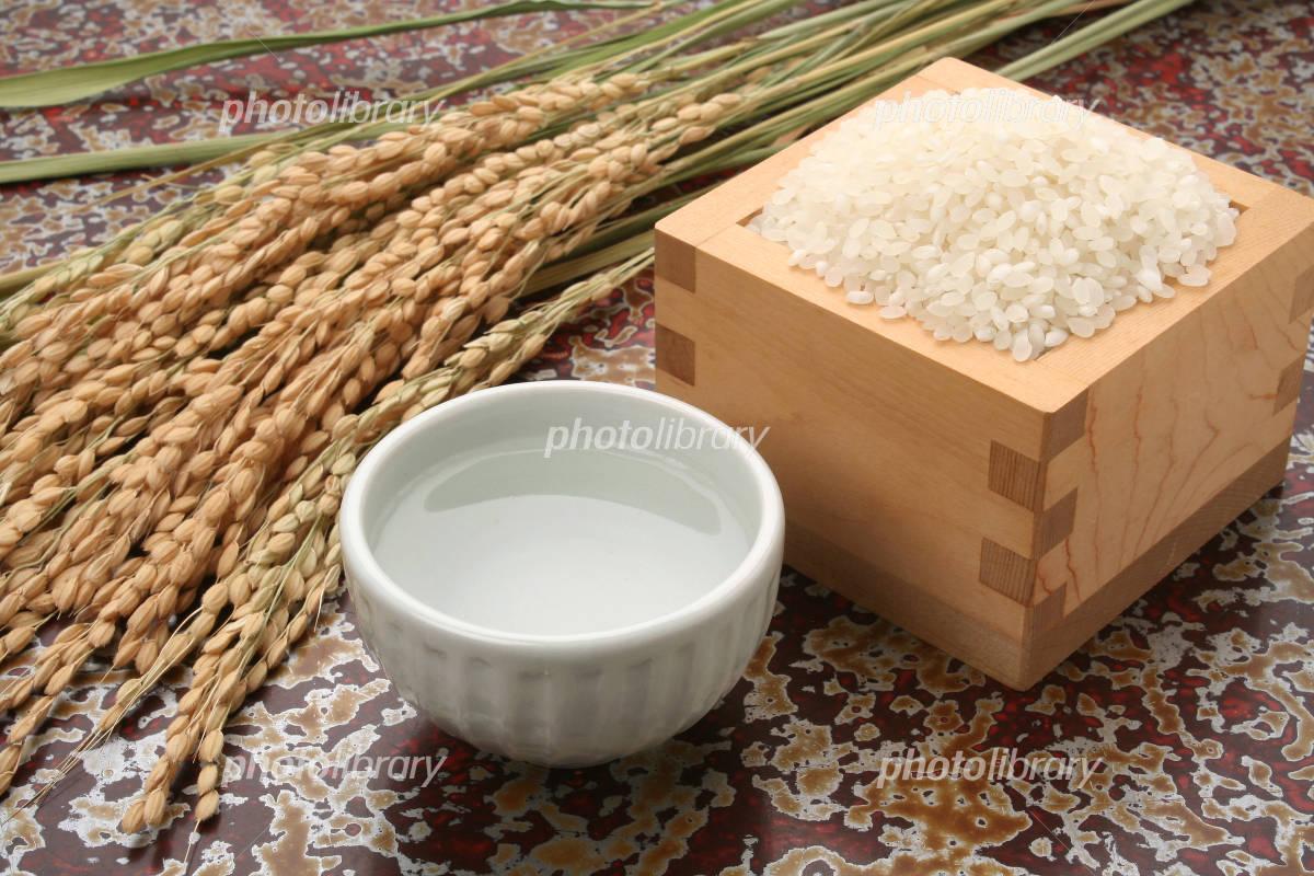 Sake and rice-rice Photo