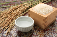 Sake and rice-rice Stock photo [3414507] Japanese
