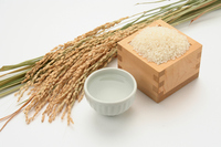 Sake and rice-rice white back Stock photo [3414512] Japanese