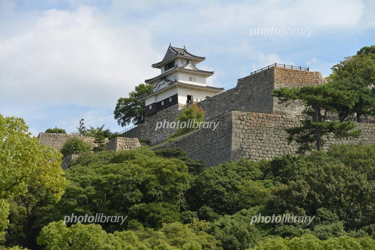Marugame Castle Photo