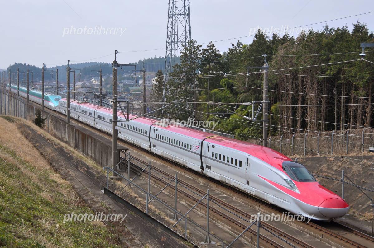 新幹線こまち はやぶさ号 写真素材 フォトライブラリー Photolibrary