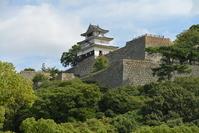 Marugame Castle Stock photo [3508030] Marugame