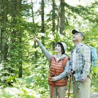 Senior couple to the trekking Stock photo [3511348] Outdoor