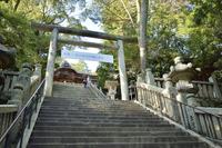 Kotohiragu approach Gozen four-stage slope Stock photo [3511809] Kotohiragu
