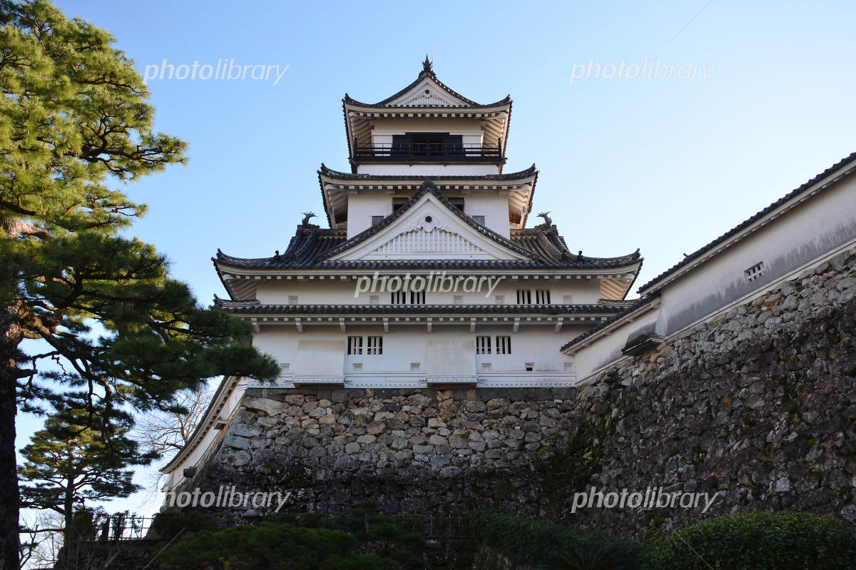 Kochi Castle existing tower Photo