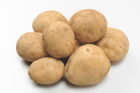 New potatoes (with soil) Stock photo [3722498] New