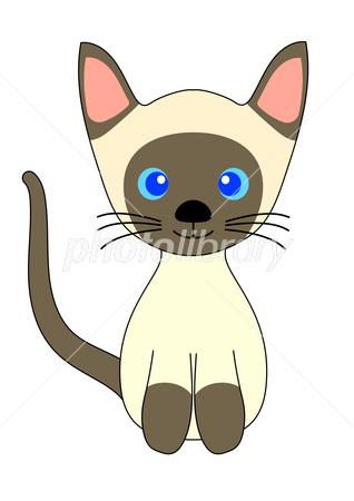 子猫 イラスト素材 3837321 フォトライブラリー Photolibrary