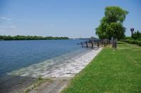 Saimizuumi-Doman Green Park Stock photo [3829319] Lake