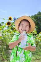 Children to drink water in sunflower field Stock photo [3831159] Children