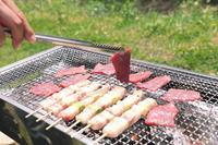 Barbecue Stock photo [3833940] BBQ