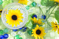 Sunflower and summer of image Stock photo [3838933] Summer