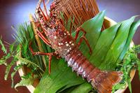 Spiny lobster Stock photo [4024827] Spiny