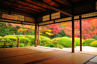 Fall of Shisen-do Stock photo [4029584] Japan