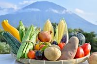 Yotei and Hokkaido harvest vegetables Stock photo [4030932] Hokkaido