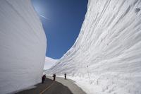 Snow Otani Stock photo [4775788] Snow