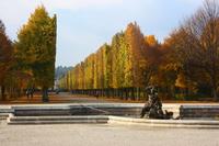 Schonbrunn Palace garden Stock photo [4776947] Austria