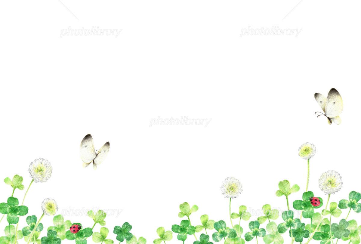 しろつめ草 野原 横 イラスト素材 4870145 フォトライブラリー