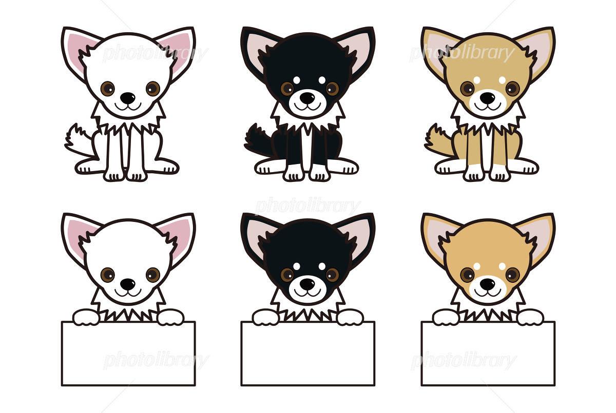 チワワ ネームカード 犬 ペット イラスト素材 4874782 フォト