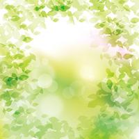 Green Leaf around [4876810] Verdure