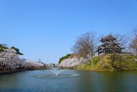 Sakura of Niigata Joetsu Takada park Stock photo [4878831] Niigata