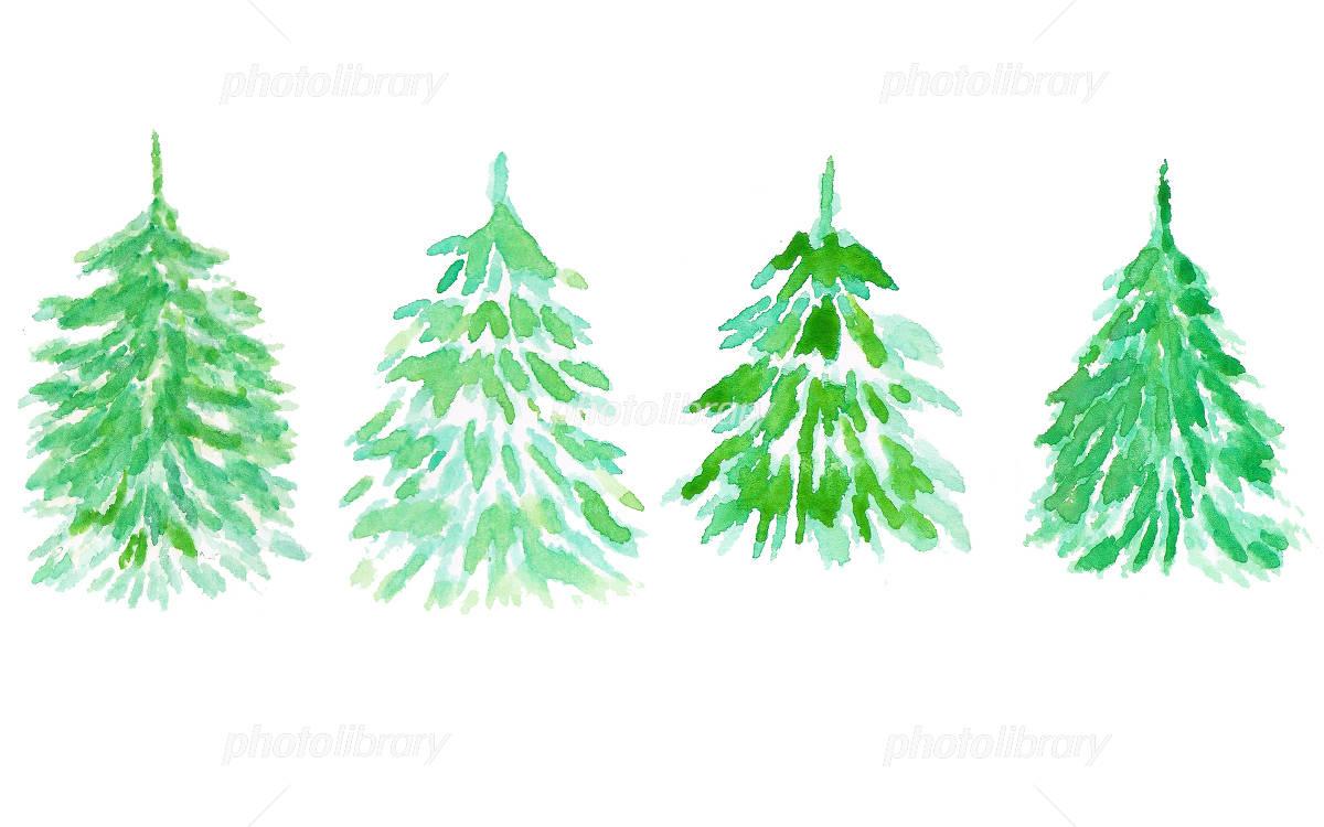 もみの木 水彩画イラスト イラスト素材 4977953 フォトライブ