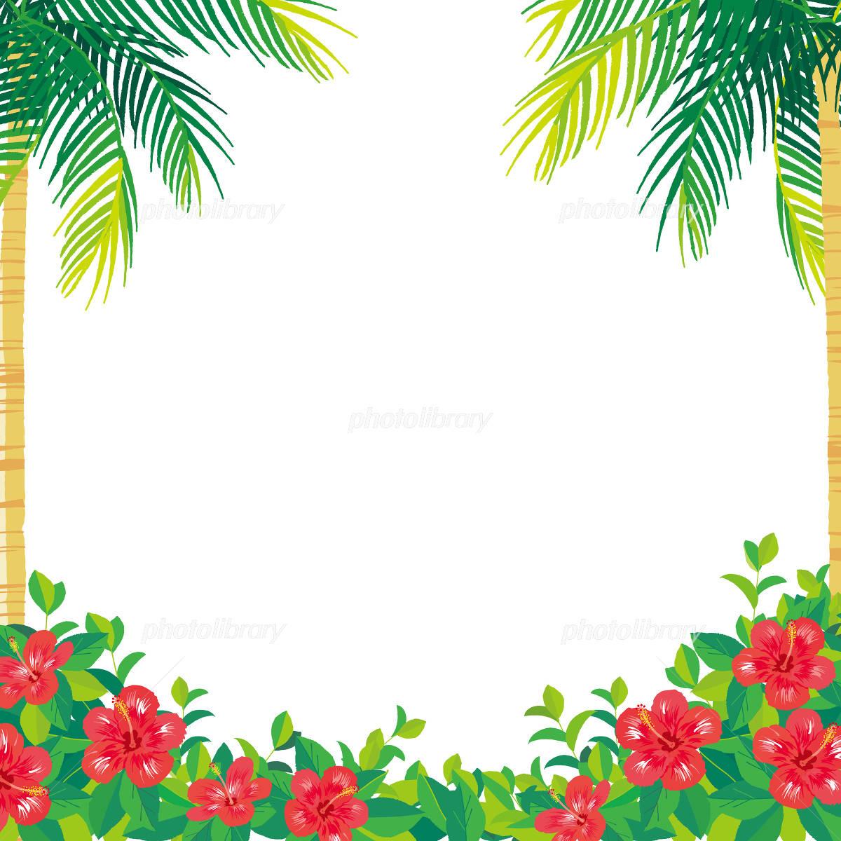 ヤシの木とハイビスカス イラスト イラスト素材 4980429 フォト
