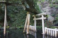 Kashima Jingu of Mitarai pond Stock photo [4977050] Kashima
