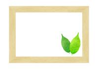 Frame of leaves tree [4978489] leaf