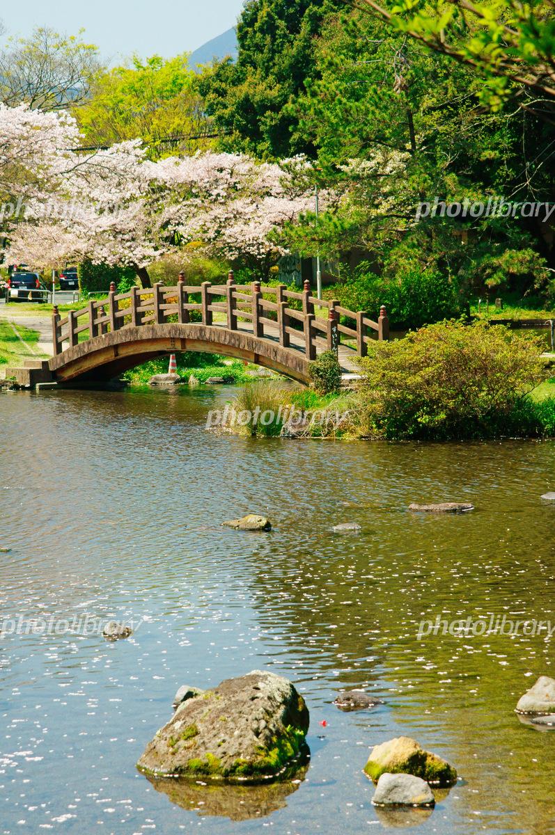 八景 水谷 公園
