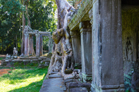 Ta Prohm Stock photo [5069561] Cambodia