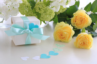 Yellow roses gift Stock photo [5069988] Father's