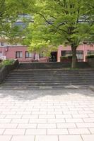 長野運動公園 階段