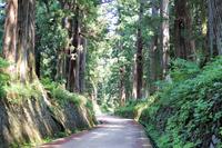 Nikko Suginami Kaido Road Stock photo [5079308] Tochigi