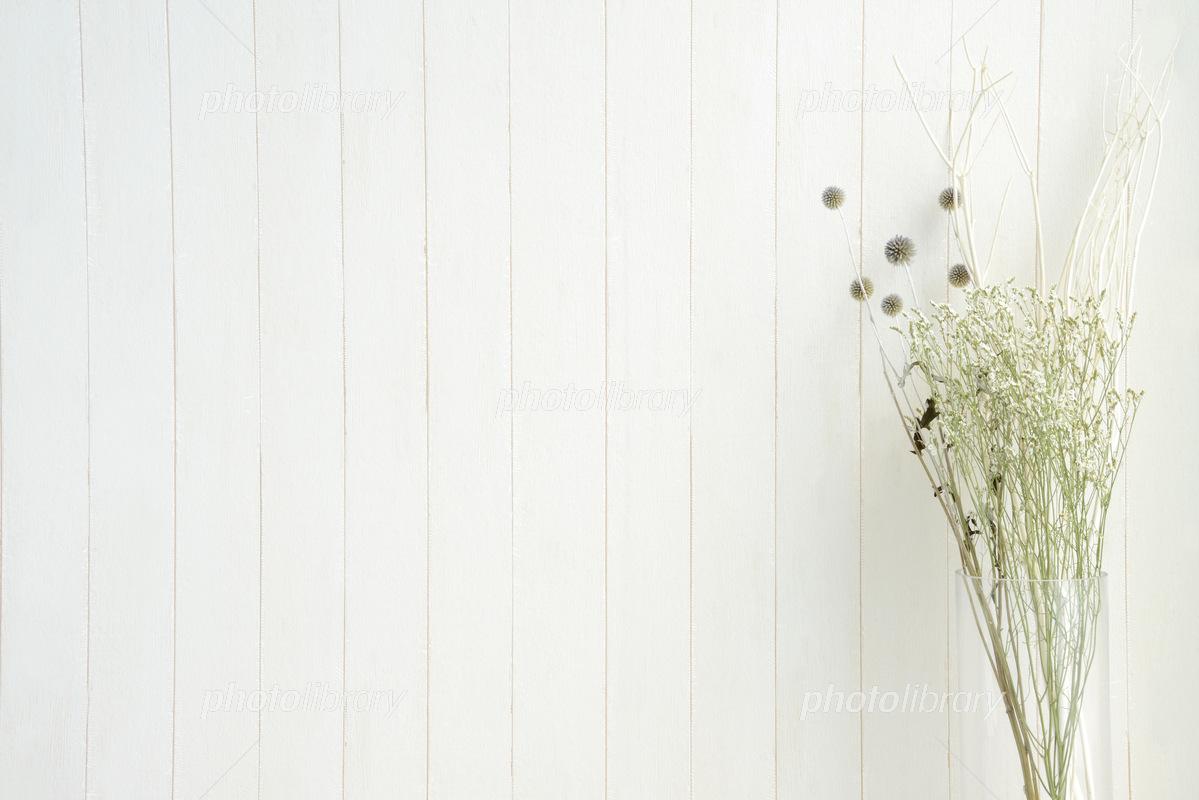 ドライフラワーと白木の背景 写真素材 5156783 フォトライブラリー