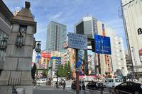写真 The streets of Akihabara(5260933)