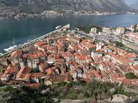 写真 Colt's streets seen from Kotor Castle(5261286)