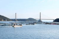 写真 Scenery where Ichang Bridge can be seen(5261393)