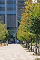写真 Autumn scenery of Shinagawa season terrace(5265829)