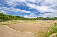 写真 Scenery of Tamasui(5266250)