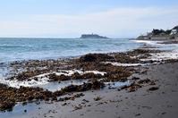 写真 Seaweed launched Shipyard sea typhoon overflowed(5266470)
