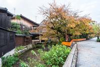写真 Kyoto Gion Shirakawa(5354145)