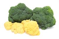 写真 Broccoli and cauliflower(5354444)