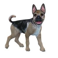 イラスト Dog illustration CG(5354801)