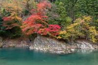 写真 Fish fumigation of autumn(5355546)