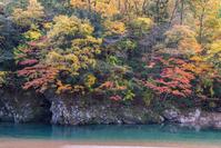 写真 Fish fumigation of autumn(5355549)