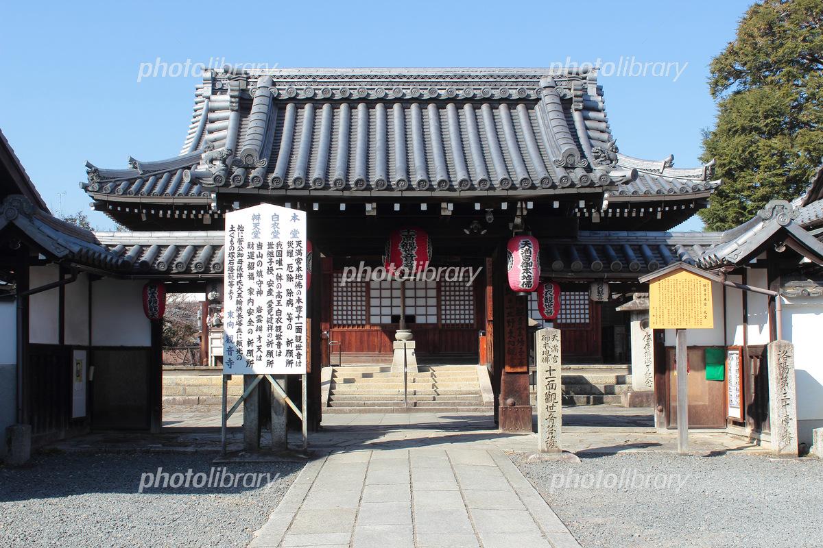 京都 東向観音寺 写真素材 [ 548...