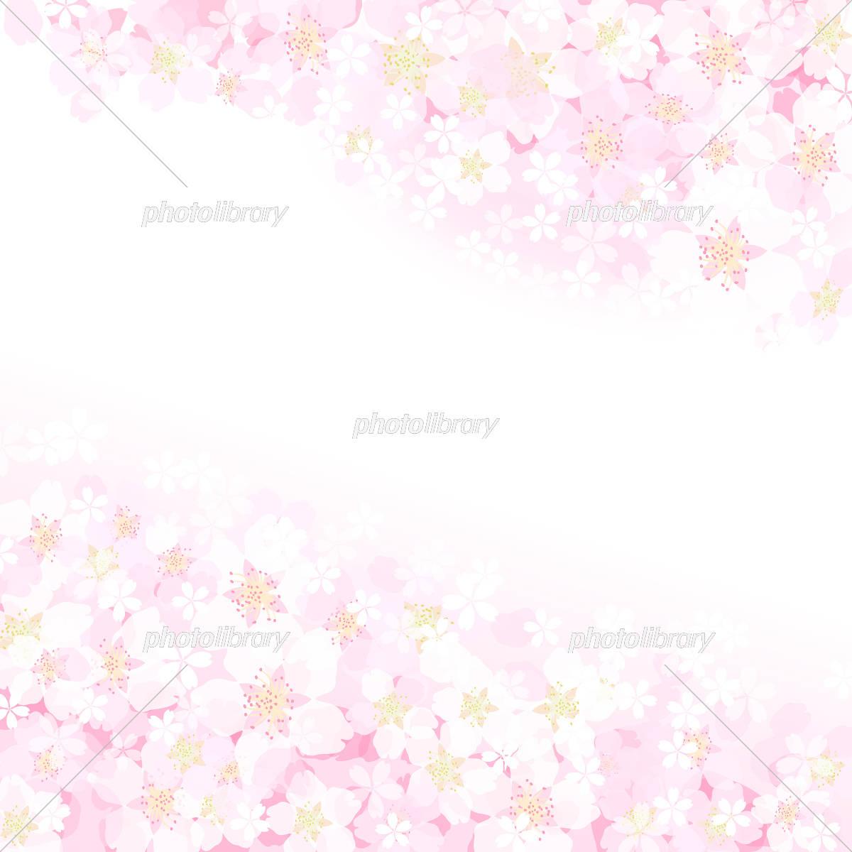 桜 背景 イラスト素材 [ 5482934 ] - フォトライブラリー photolibrary